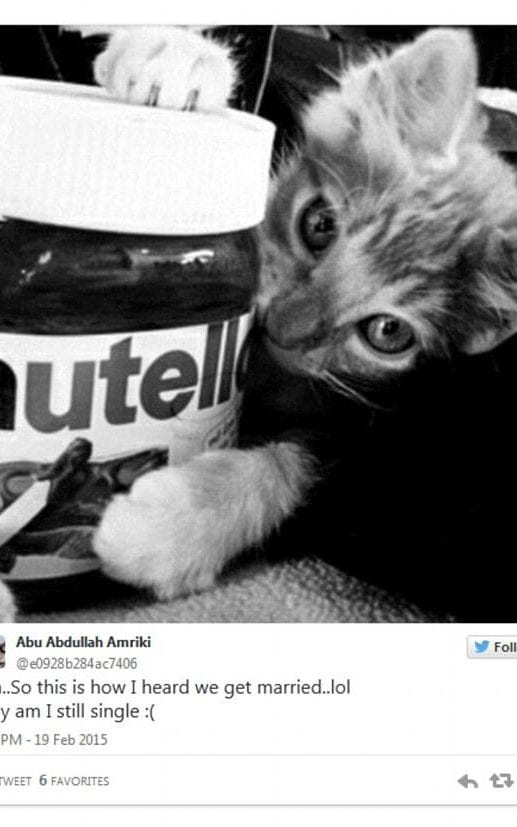 This bizarre kitten tweet was posted by an ISIS fighter