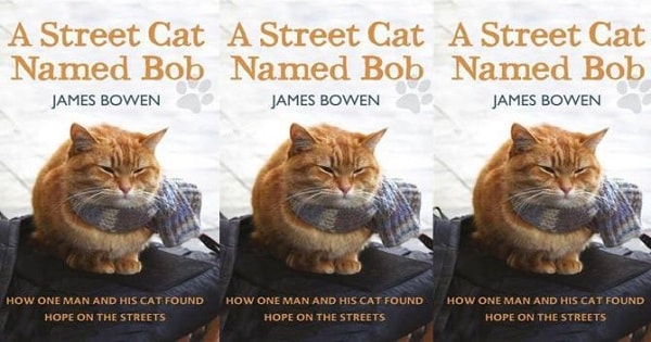 A Streetcat Named Bob, the Movie – Hits Theaters November 2016!