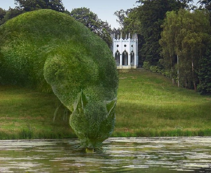Topiary Cats 'Seen by Millions' on Facebook! 3