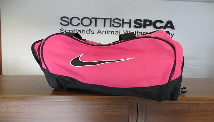Two cats were abandoned in Tarbolton in this Nike sports bag