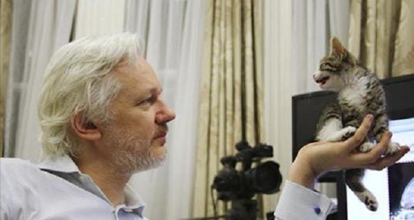 Julian Assange Gets A New Kitten From His Children to Help Battle Loneliness!