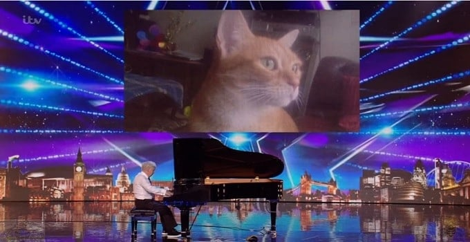 73-year Old Pianist Dedicates Performance to His Cat, Simon Cowell Breaks Down in Tears! - VIDEO!