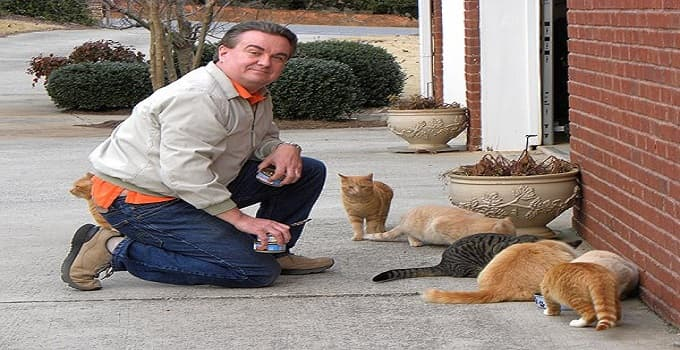 Ban on Feeding Feral Cats in One California Town Causing a Real Hissy-fit!