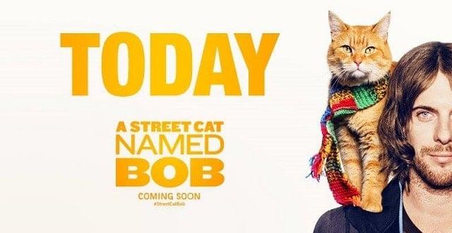 A Street Cat Named Bob, Starring Luke Treadaway! OFFICAL MOVIE TRAILER!