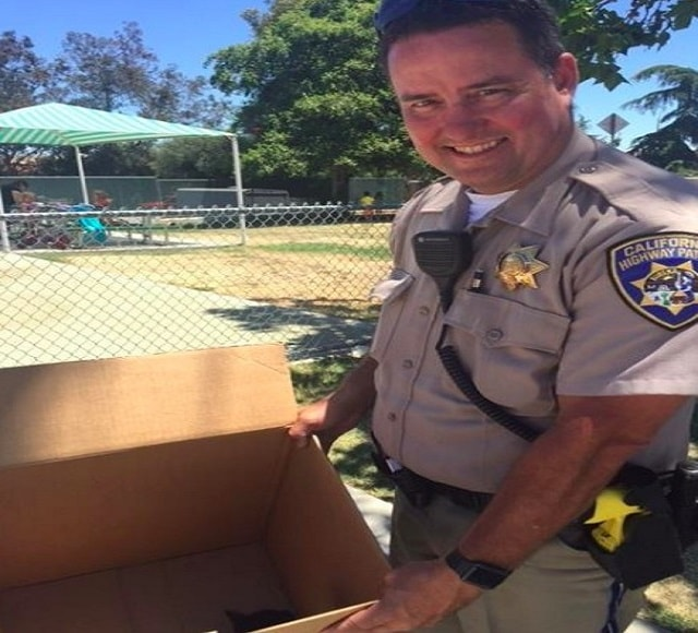 Livermore, CA— CHP Officer Darling helps with kitten rescue in Livermore. Photo courtesy