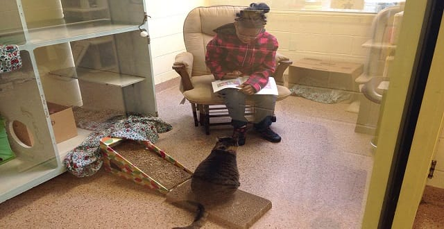 Summer Program Launched to Get Kids to Read to Cats!