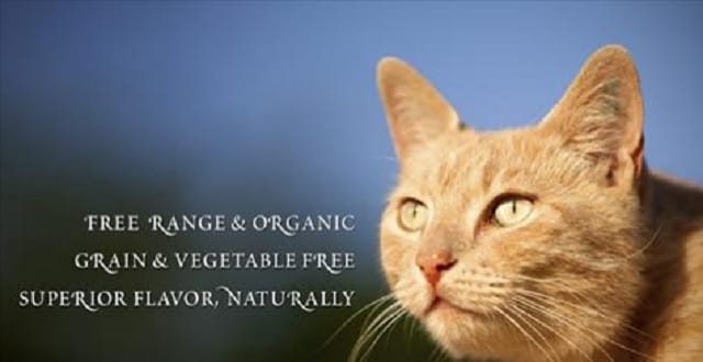 Raw Cat Food Recalled in U.S., Canada for Listeria, Salmonella!