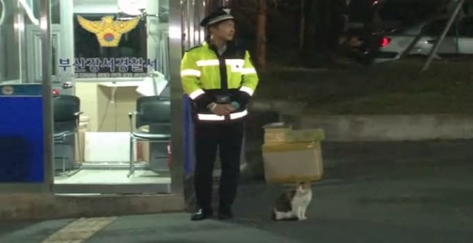 Meet South Korea's Most Unusual Police Officer