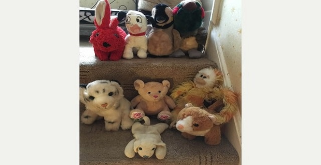Some of Milly's toy collection