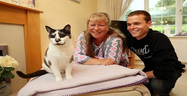 Stray Cat Who Helped Grief-stricken Teenager Cope After His Stepdad 's Death Nominated for Award!