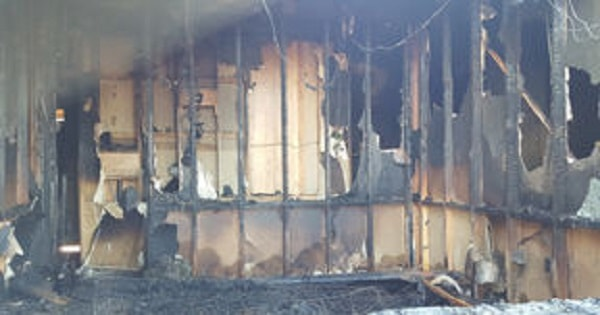 Cat Escapes Fire that Destroyed Mobile Home