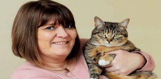 Cat Saves Owner's Life by Detecting She Had Breast Cancer -TWICE!!!