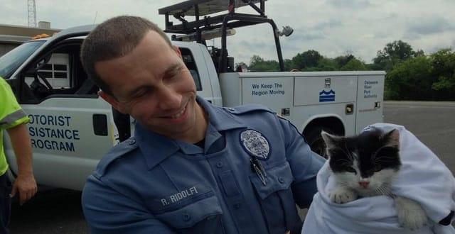 Police Officer, Good Samaritan Rescue Kitten Tossed from Moving Car on Walt Whitman Bridge!
