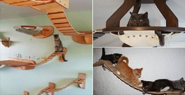 Goldtatze Cat Furniture that Hangs From Your Walls and Ceilings!
