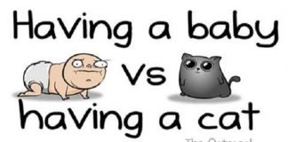 """""""Having A Baby Vs. Having A Cat"""" Comic Is Simply Hilarious!"""