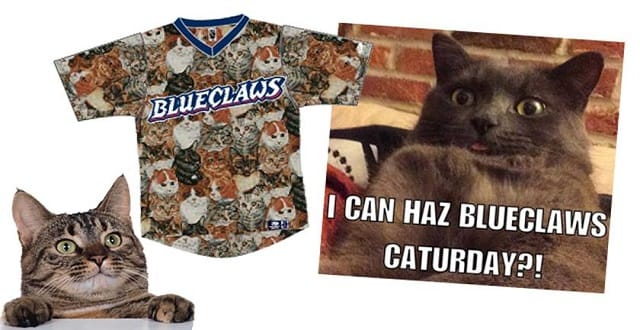 Minor League Baseball Team to Have Cat-centered Promotion Day!