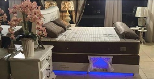 Mattress Company Makes Beds With A Special Compartment For Your Pet!