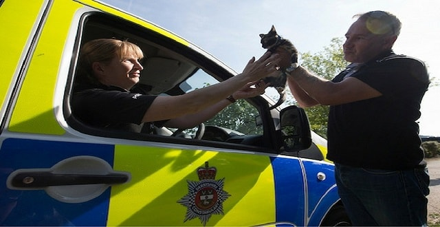 PC Rachel Baggaley hands the kitten back to owner Doug Harrison.