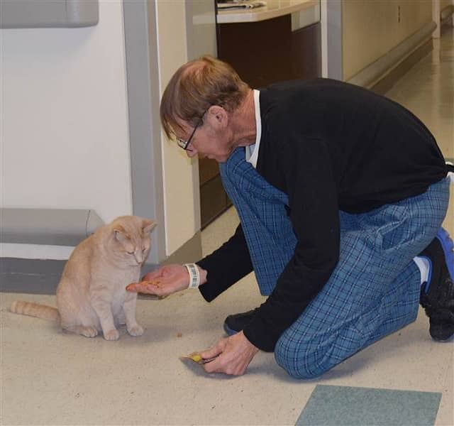 """Army veteran James Gearhart gives his favorite cat a treat to say """"thank you."""""""