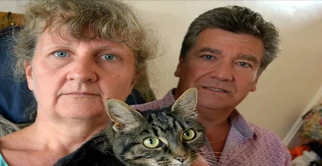 'Cattery Lost My Pet' One Family's Fury After Their Beloved Cat Escapes Through Open Door at Cattery!