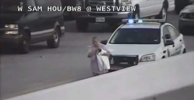 Ultimate Cat Lady Interrupts Houston Traffic To Rescue Stray Cat!