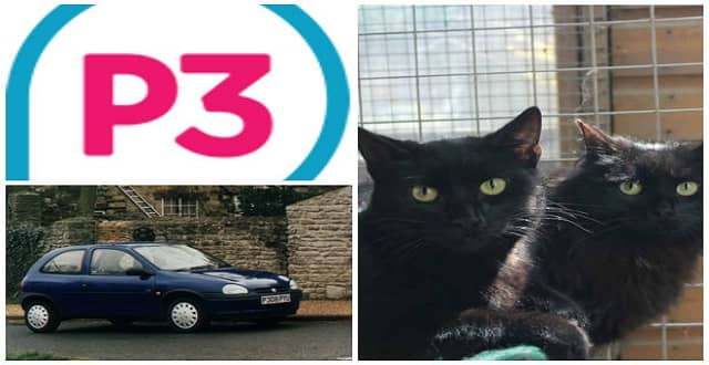 'I Lived in My Vauxhall Corsa for 18 Months' – Homeless Pensioner Slept in Car With His Cats!