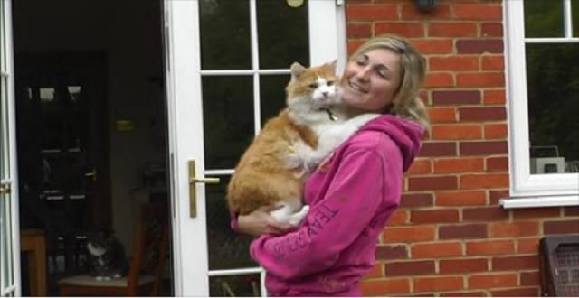 Cat Was Left To Fend For Himself On A Farm Until One Woman Came Along …