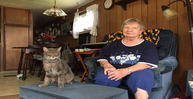 87-year-old Woman Who Was Stranded Reunited with Missing Cat!