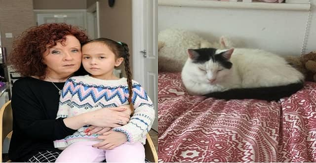 Mom Desperate to Find Missing Cat for 'Distraught' Autistic Daughter!