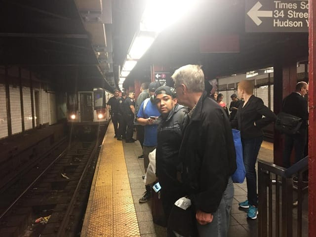 """Straphangers quickly dubbed the frisky feline """"Seven."""" (DANNY LEWIS/NEW YORK DAILY NEWS)"""