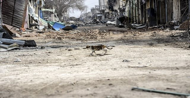 People living in Islamic State's 'Caliphate' have been warned not to violate the ban (Picture: Getty Images)