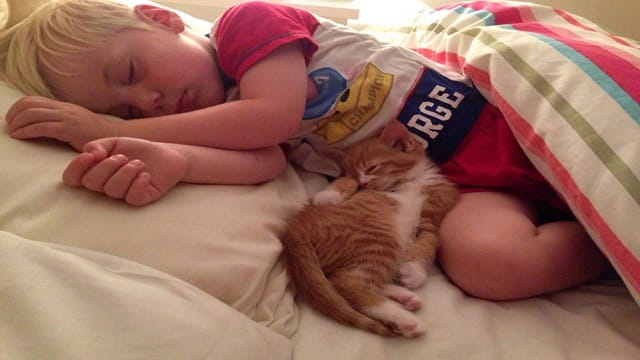 Lucas, six, was best friends with the family cat Leo