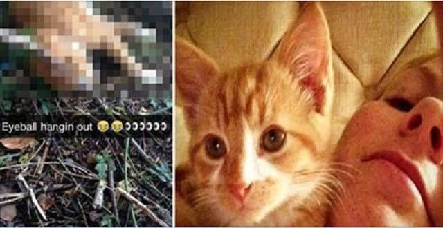 Sick Snapchat Teen Gang Torture Cat to Death, Sending Pictures of its Final Moments to Their Friends!