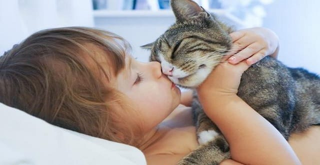 10 Ways to Make Your Cat REALLY Love You!
