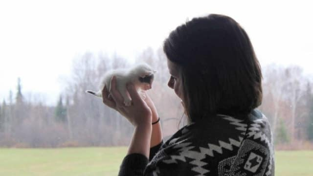 """""""I was devastated. I've always loved animals, and to think that someone could just put these little, tiny baby kittens in a cold tin mailbox and just leave, just abandon them, I felt shame for the people that would have done that,"""" Leslie Armitage tells CBC News. (Provided)"""