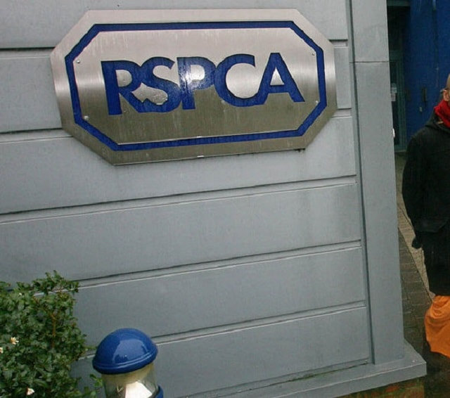 The RSOCA are calling on anyone with information to contact their confidential hotline