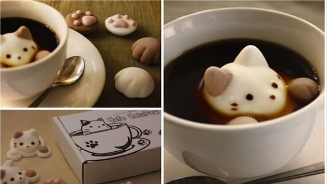 And So, 'Cat-Shaped Marshmallows' Are A Thing Now!
