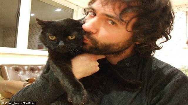 Meet 'The Bear'! The Black Cat Who Has More Than 9 Lives!