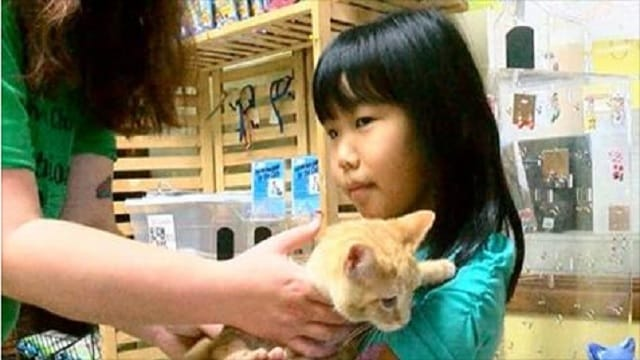 Young Girl and Three-legged Cat Form Special Friendship Because They Have Something in Common!