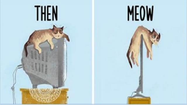 Technology and Cats: How Both Have Evolved!