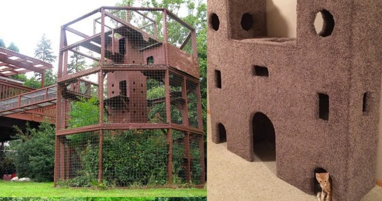 You HAVE To See These 7 Amazing Cat Castles!