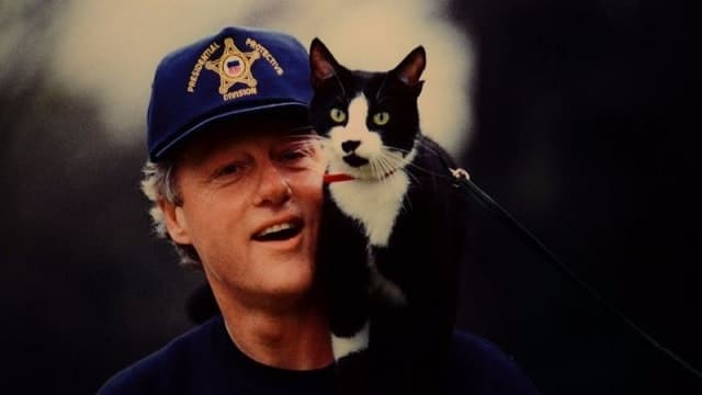 Bill Clinton's Cat Starred In An Unreleased Video Game and It's Coming Back!