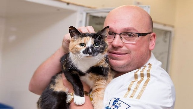 Mercedes (aka Taff) the cat has been reunited with her owner Glen Colbridge after she jumped into someone else's car and got lost