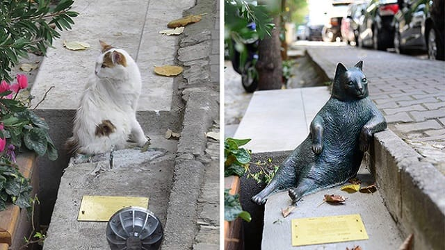 SO?? What's Happened to the Sculpture of Istanbul's Social Media Phenomenon Cat 'Tombili'?