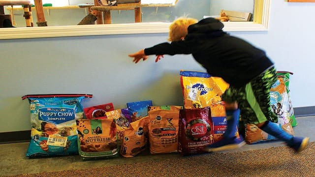 Wonderful Young Boy Asks for Dog and Cat Food for His Birthday!