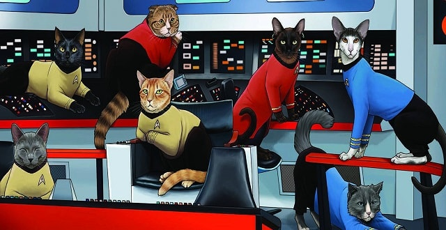 Star Trek Cats – What Else Needs to Be Said?