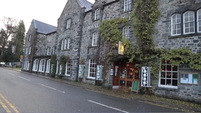 Betws y Coed Hotel Staff Fired After Cat Is Killed on the Premises – But Is That Enough?