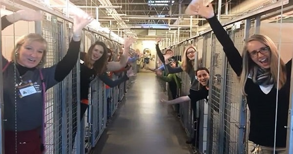 Shelter Celebrates All Empty Cages After Successful Adoptions of Every Single Cat and Dog!