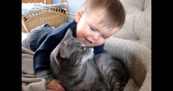 Infant Cuddling And Talking To His Best Friend – a Gorgeous Kitty Named 'Sadie'!