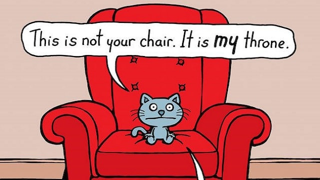 """These Funny Cartoons Purr-fectly Illustrate Your Cat's """"Cattitude"""""""